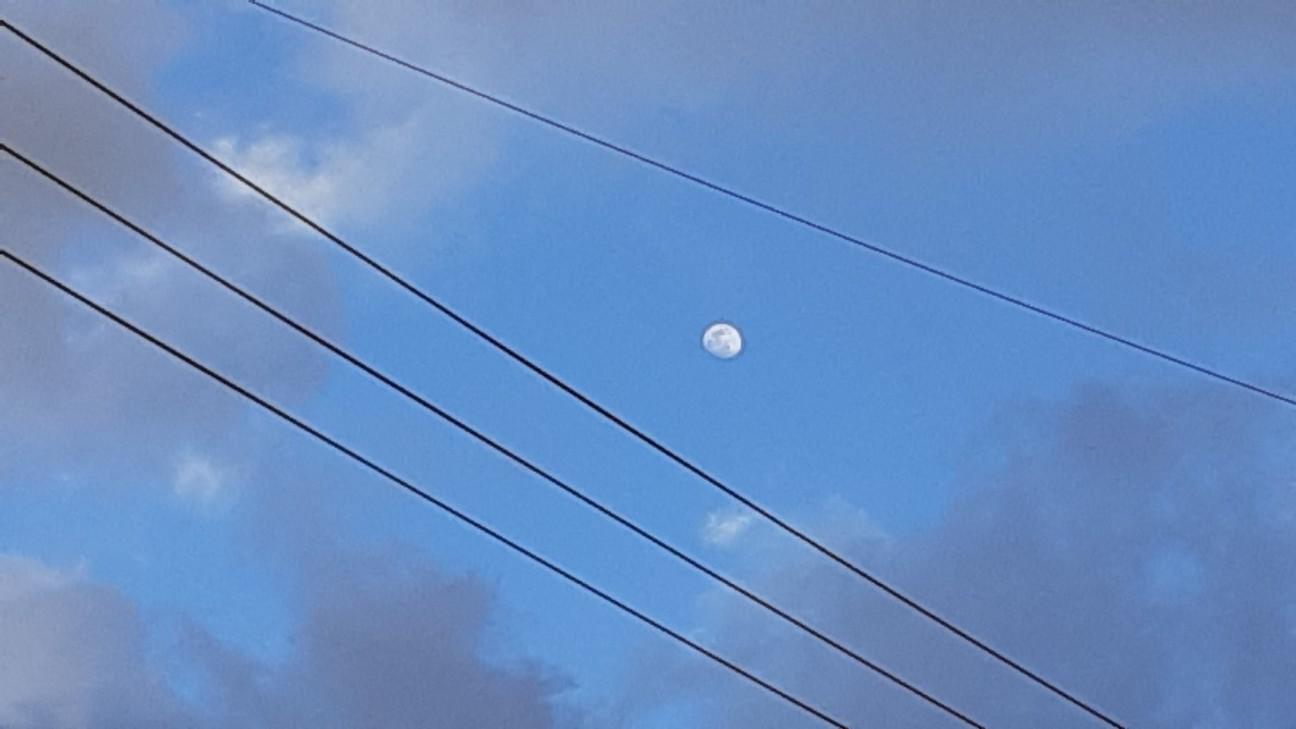 f:id:moonmond:20210225045041j:image