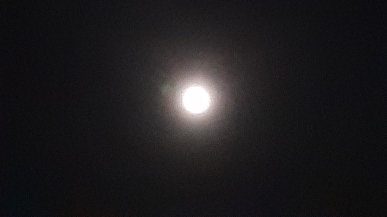 f:id:moonmond:20210428000131j:image