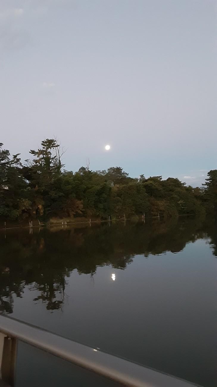 f:id:moonmond:20210922230051j:image