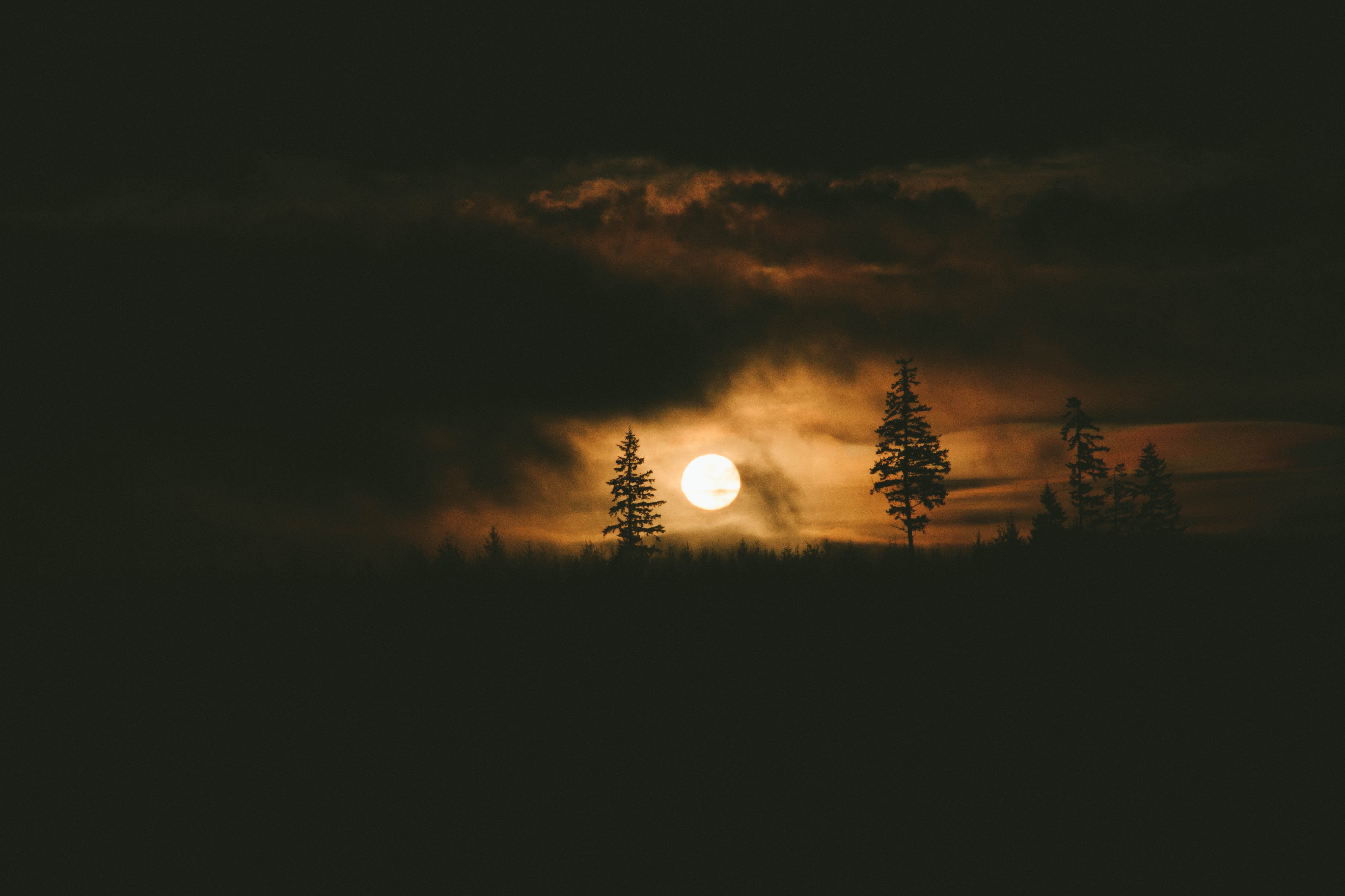 f:id:moonribar:20170717225824j:image