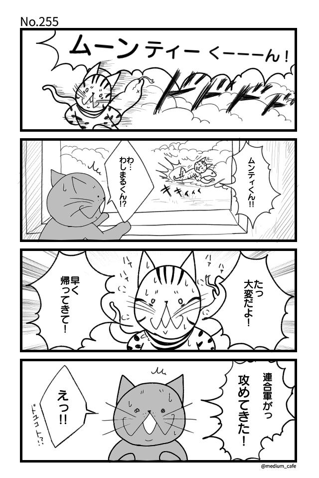 猫のWEB漫画:猫伝奇No.255