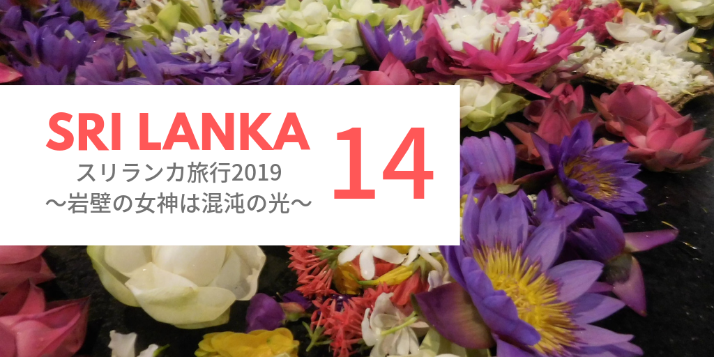 f:id:mop-misaki:20190725144151p:image
