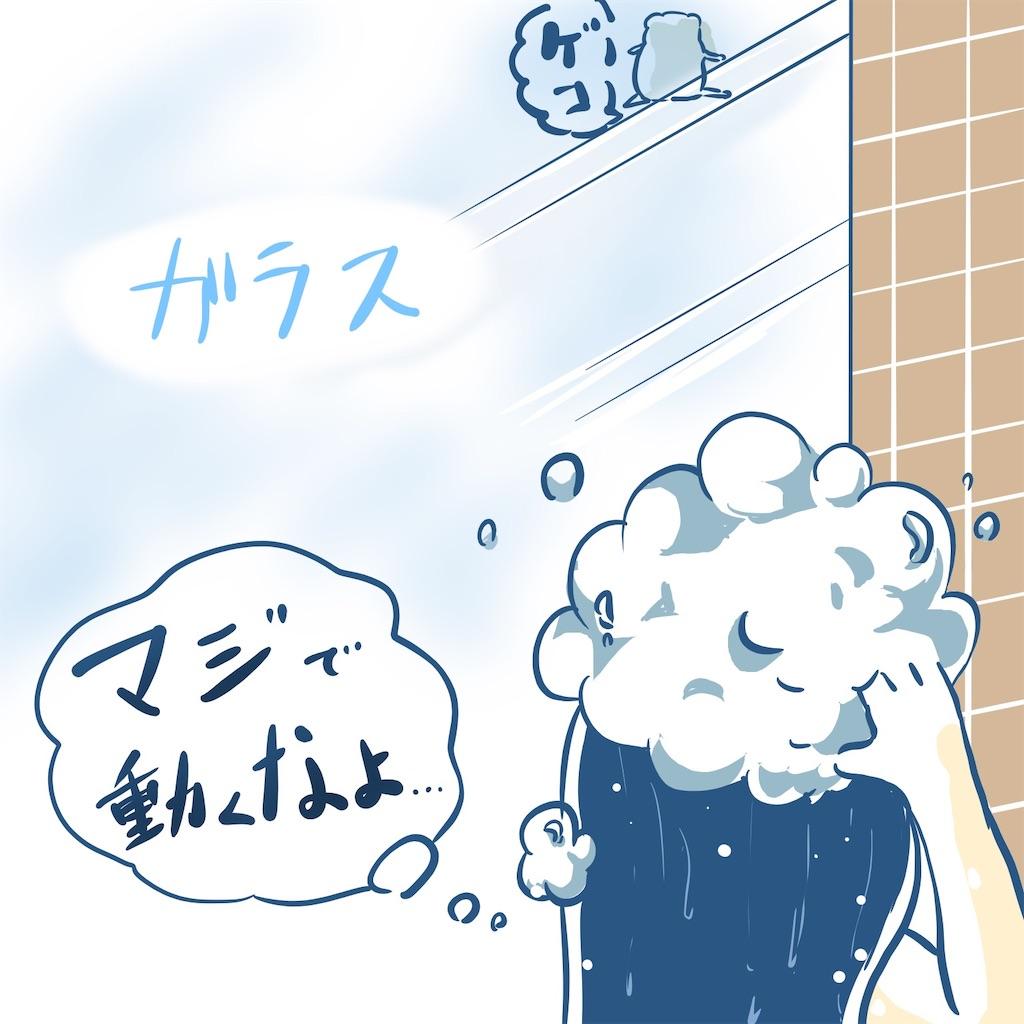 f:id:mop-misaki:20190822085253j:image