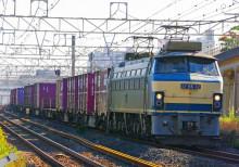 EF66-0 貨物列車 大磯 平塚 撮影地