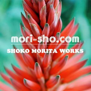 f:id:mori_sho:20170126111736j:plain