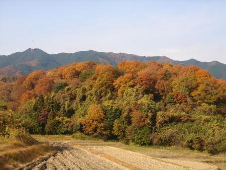 f:id:moribito-hirao:20071202103730j:image:right
