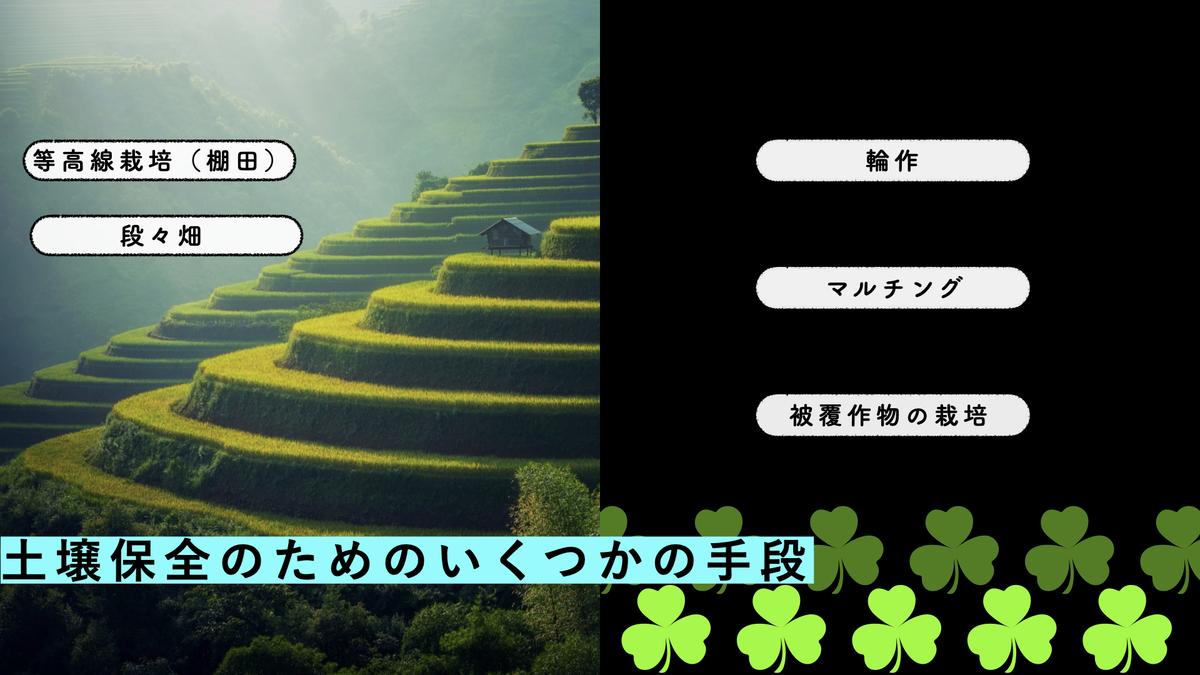 f:id:moribitoo:20210218180252j:plain