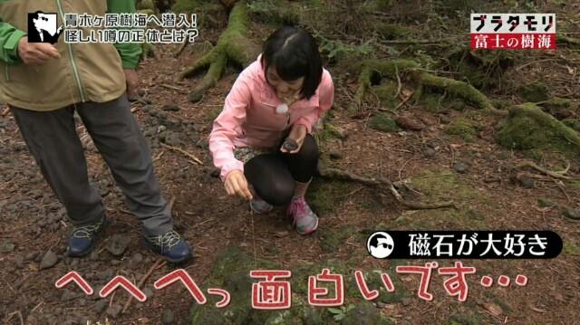 f:id:morifumikirikita319:20161211111249j:image