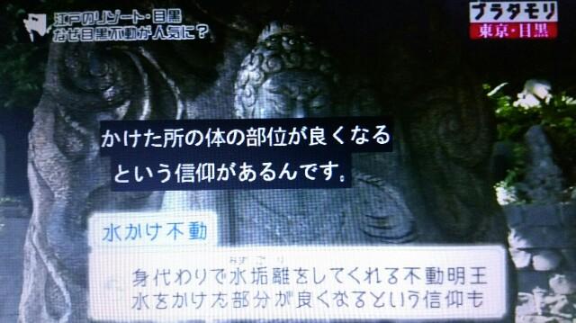 f:id:morifumikirikita319:20161217231951j:image