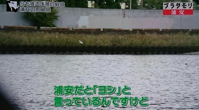 f:id:morifumikirikita319:20170108120804j:image