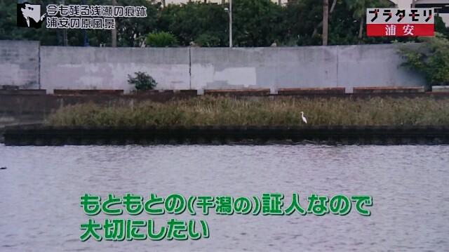 f:id:morifumikirikita319:20170108120822j:image