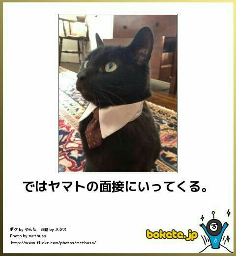 f:id:morifumikirikita319:20170202194801j:image