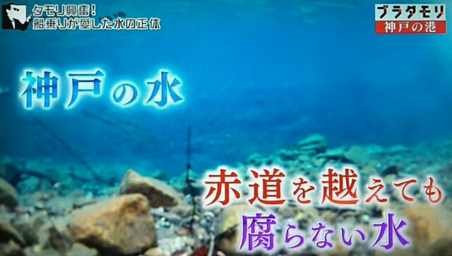 f:id:morifumikirikita319:20170219081957j:image