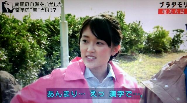 f:id:morifumikirikita319:20170304204355j:image