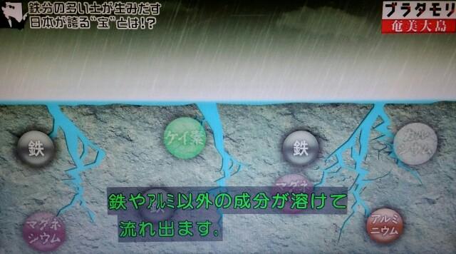 f:id:morifumikirikita319:20170304211100j:image