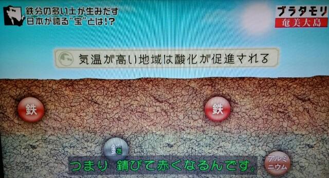 f:id:morifumikirikita319:20170304211112j:image