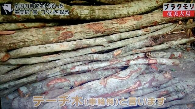f:id:morifumikirikita319:20170304211252j:image