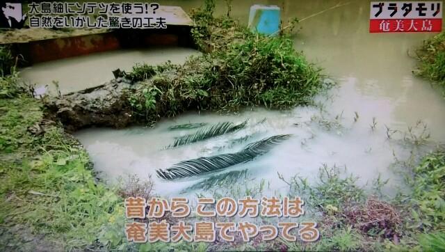 f:id:morifumikirikita319:20170304214507j:image