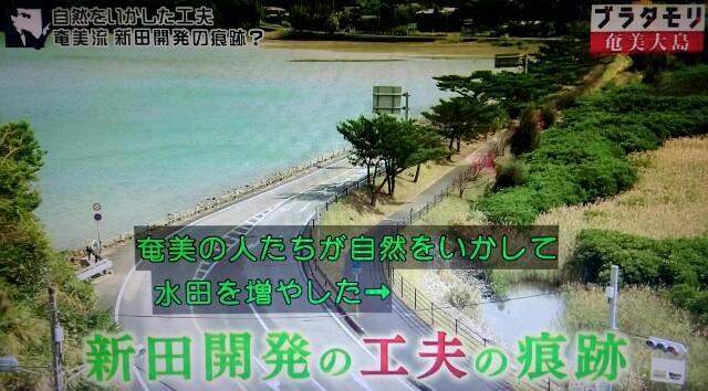 f:id:morifumikirikita319:20170304220814j:image