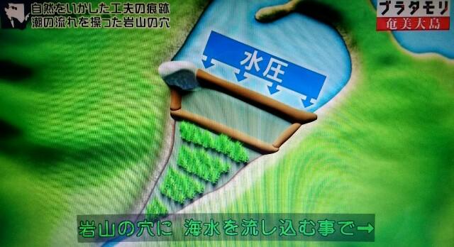 f:id:morifumikirikita319:20170304225247j:image