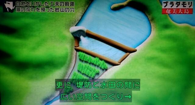 f:id:morifumikirikita319:20170304225301j:image