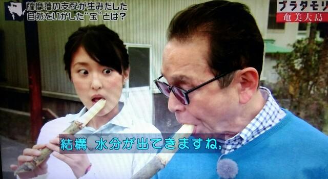 f:id:morifumikirikita319:20170304230834j:image
