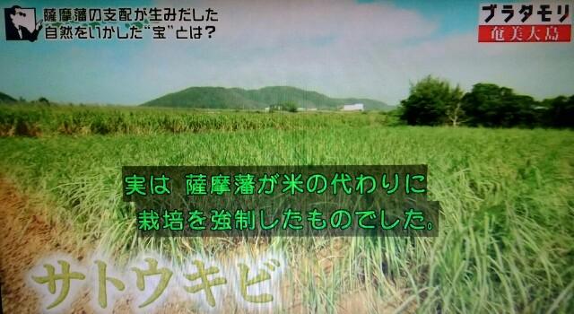 f:id:morifumikirikita319:20170304231117j:image