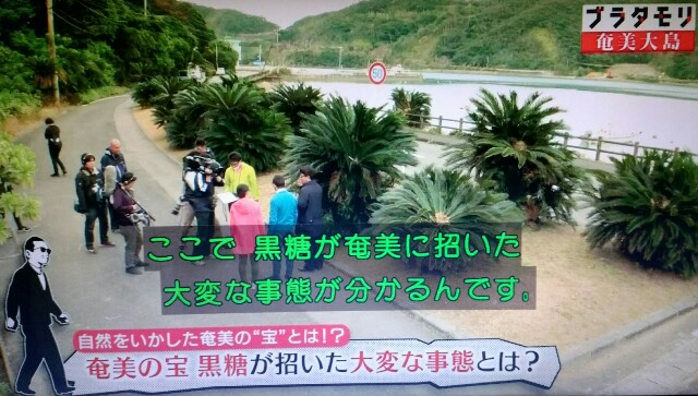 f:id:morifumikirikita319:20170305045812j:image