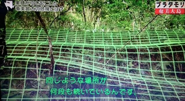f:id:morifumikirikita319:20170305050135j:image
