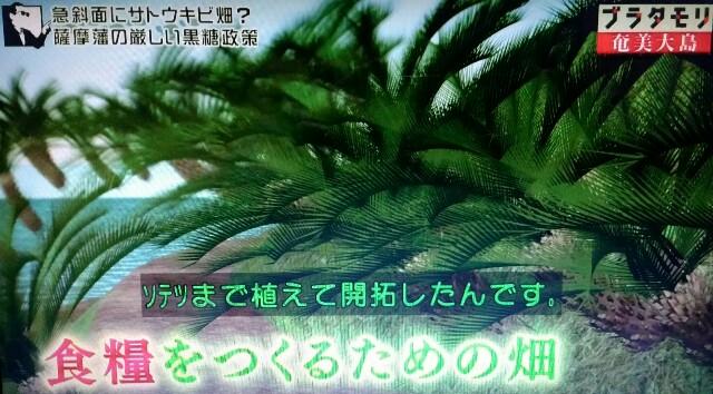 f:id:morifumikirikita319:20170305050158j:image