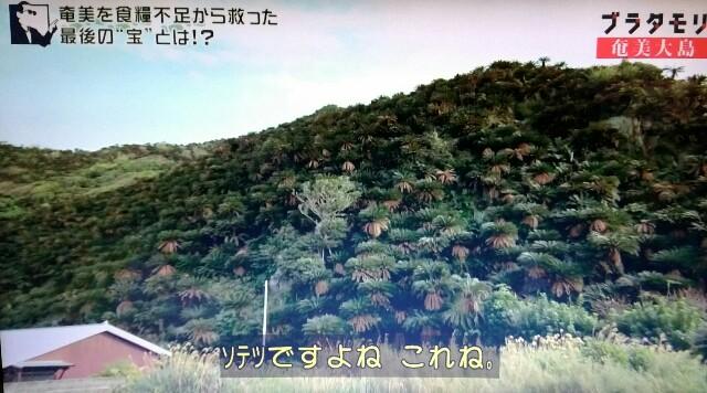 f:id:morifumikirikita319:20170305050352j:image