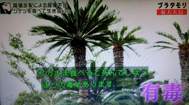 f:id:morifumikirikita319:20170305050507j:image