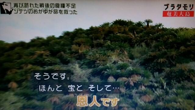 f:id:morifumikirikita319:20170305050746j:image
