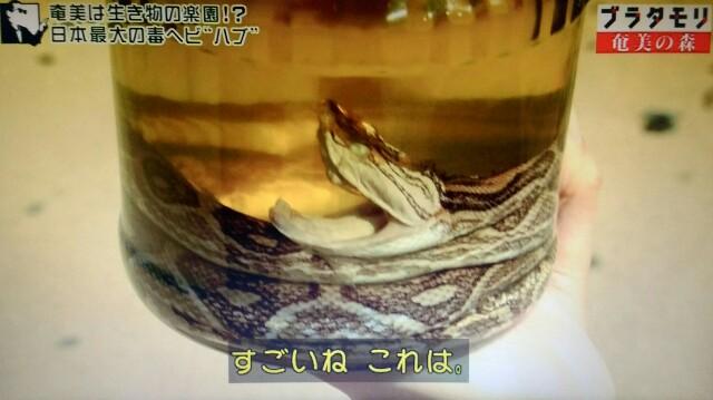 f:id:morifumikirikita319:20170325205411j:image