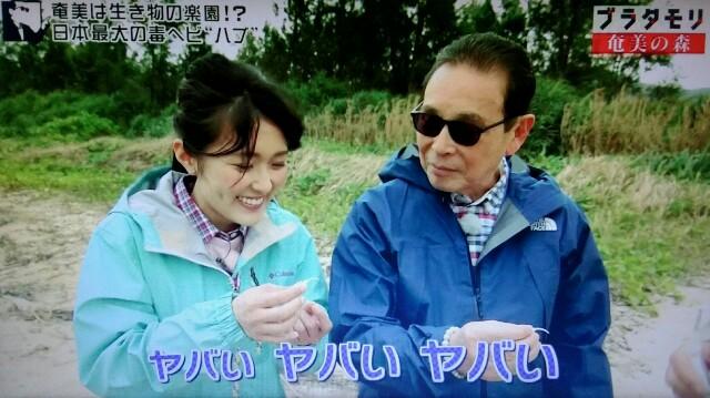 f:id:morifumikirikita319:20170325205527j:image