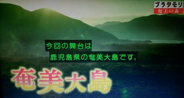 f:id:morifumikirikita319:20170325210737j:image