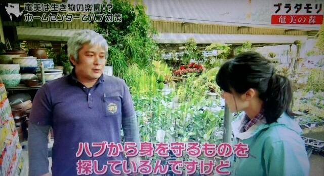 f:id:morifumikirikita319:20170325211540j:image