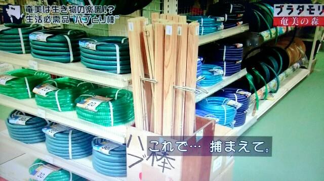 f:id:morifumikirikita319:20170325211629j:image