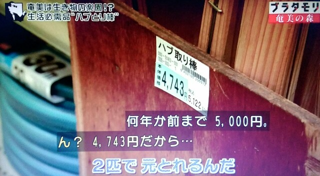 f:id:morifumikirikita319:20170325211704j:image