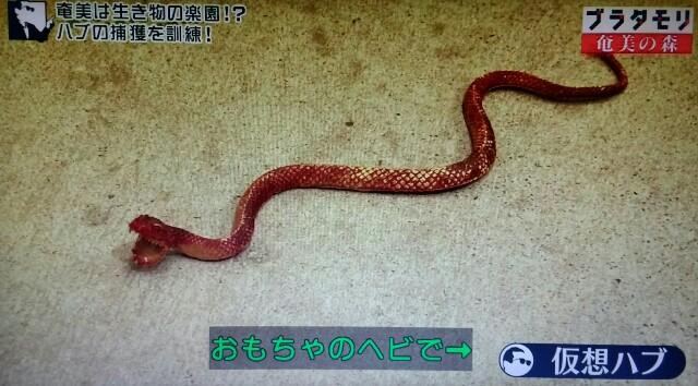 f:id:morifumikirikita319:20170325212258j:image
