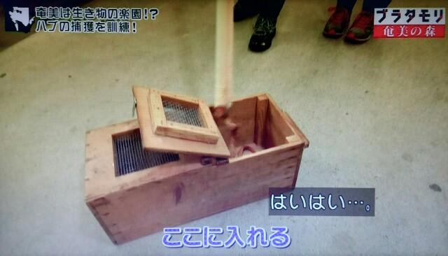 f:id:morifumikirikita319:20170325212319j:image