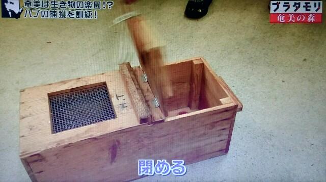 f:id:morifumikirikita319:20170325212328j:image