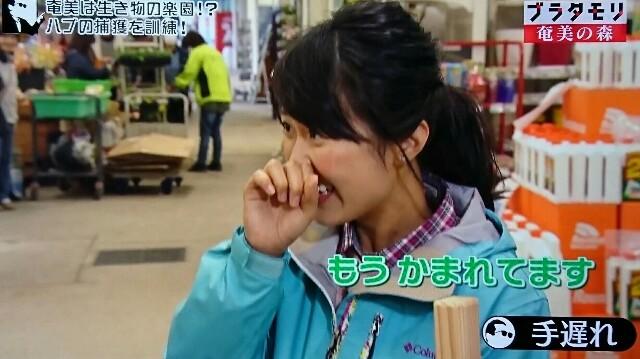 f:id:morifumikirikita319:20170325213217j:image
