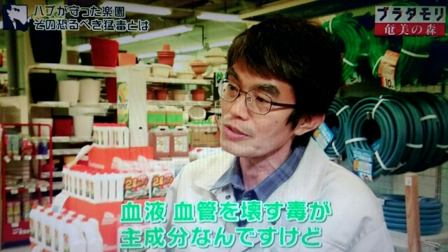 f:id:morifumikirikita319:20170325220329j:image