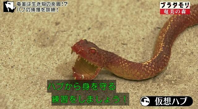 f:id:morifumikirikita319:20170325232830j:image