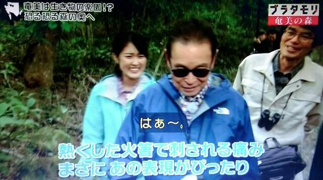 f:id:morifumikirikita319:20170325234948j:image