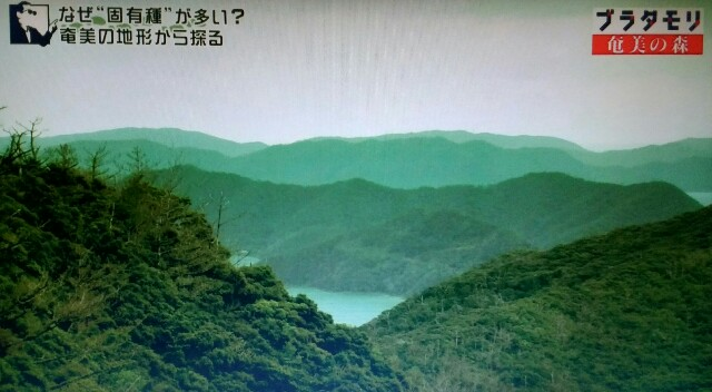 f:id:morifumikirikita319:20170325235023j:image