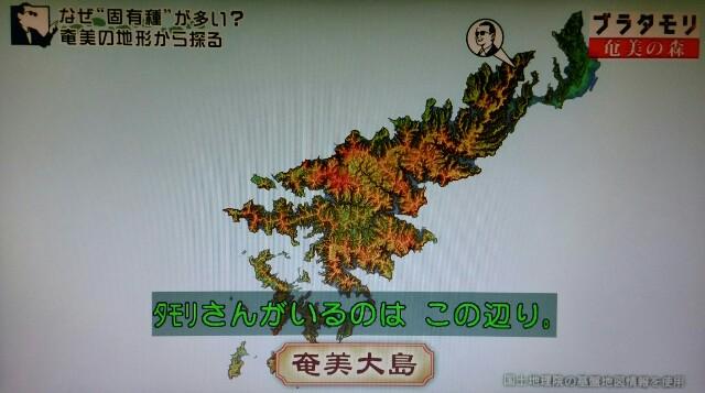 f:id:morifumikirikita319:20170325235034j:image