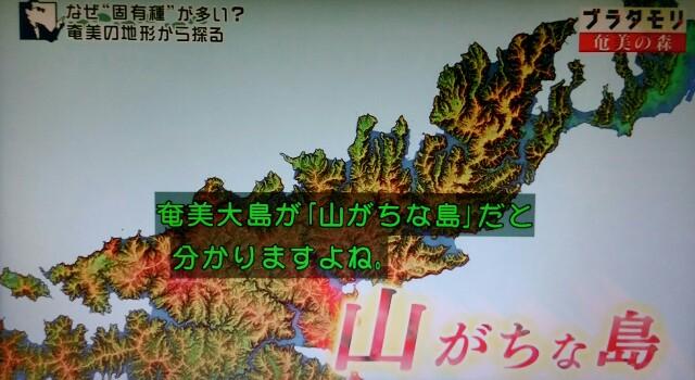f:id:morifumikirikita319:20170325235047j:image