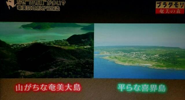 f:id:morifumikirikita319:20170326000747j:image